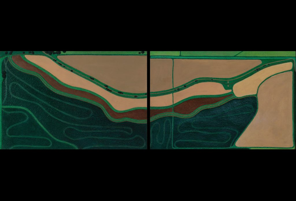 "8 of 32: Wet and Dry Fields Louisiana: 2019, Forton MG, 19"" x 45½"" x 2"" (framed)Click to enlarge"